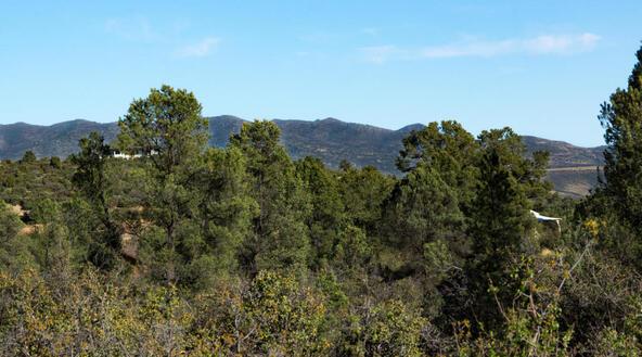 17955 W. Buckhorn Dr., Peeples Valley, AZ 86332 Photo 23