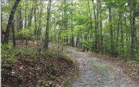 Home for sale: Lt 53 Star Creek Dr., Morganton, GA 30560