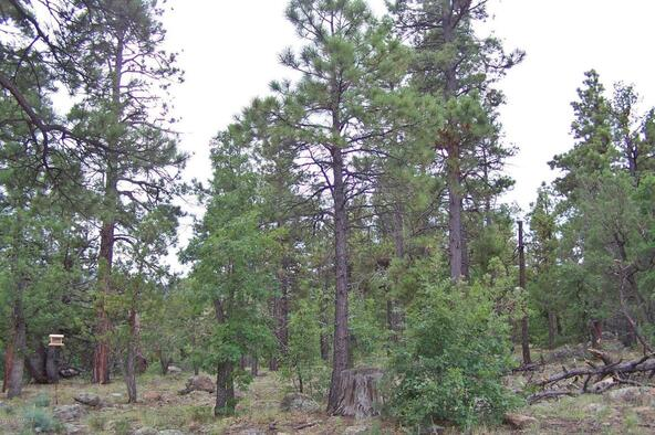2620 Rock Springs Ct., Williams, AZ 86046 Photo 4