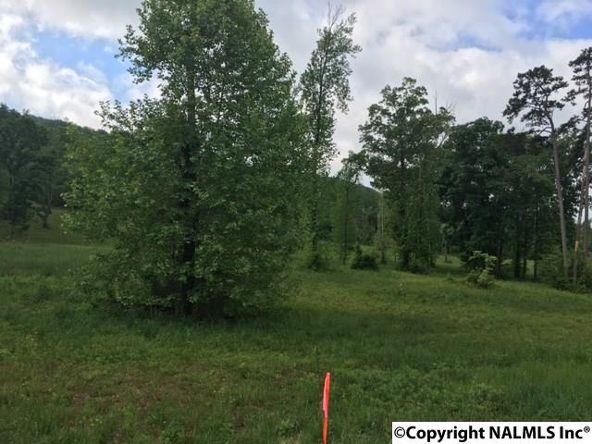 1 County Rd. 67, Langston, AL 35755 Photo 5