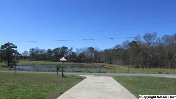 1501 Meadowlark Ln., Albertville, AL 35951 Photo 12