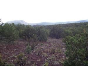 491 Westwood Ranch Lot 491, Seligman, AZ 86337 Photo 3