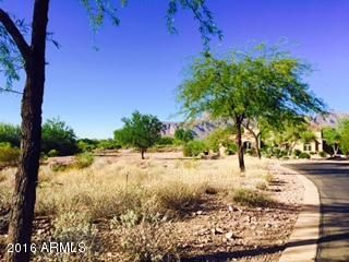 7274 E. Wilderness Trail E, Gold Canyon, AZ 85118 Photo 4