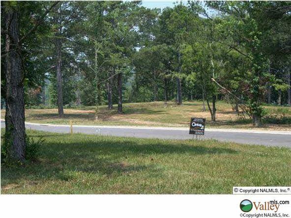 101 Lake Creek Dr., Guntersville, AL 35976 Photo 18