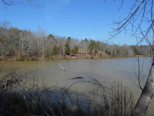 16.9 Acres Private Rd. 1363, Ariton, AL 36311 Photo 28