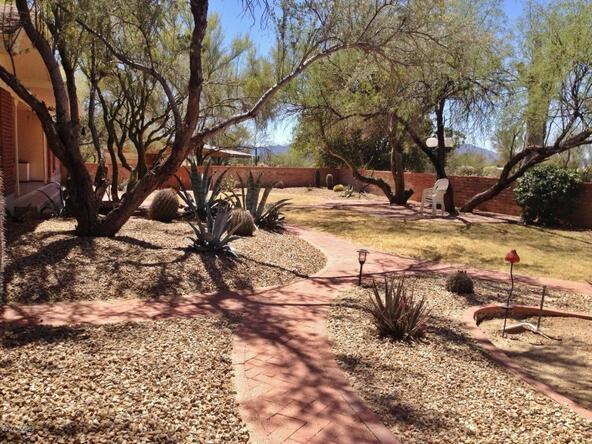 10151 N. Orange Ranch, Tucson, AZ 85742 Photo 64