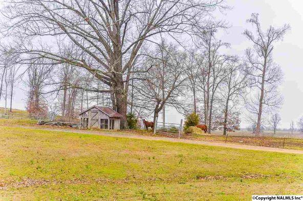 721 County Rd. 22, Mount Hope, AL 35651 Photo 25