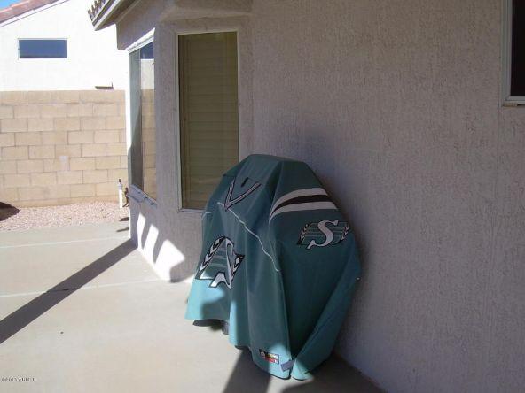 22516 N. Via de la Caballa --, Sun City West, AZ 85375 Photo 52
