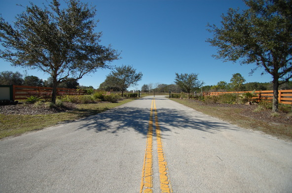 Greengrove Bv, Lot 12, Clermont, FL 34711 Photo 5