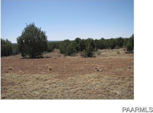 292 Sabrina, Ash Fork, AZ 86320 Photo 13