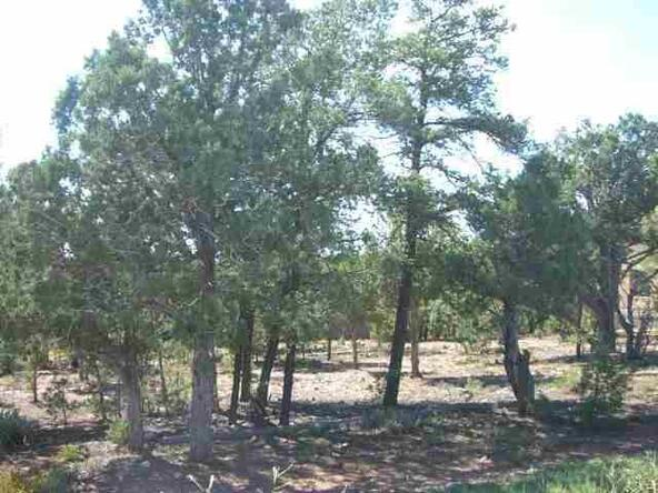 1500 E. Bear Hollow Ln., Show Low, AZ 85901 Photo 1