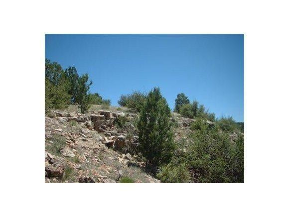 6808 S. Roadrunner Ln., Williams, AZ 86046 Photo 5