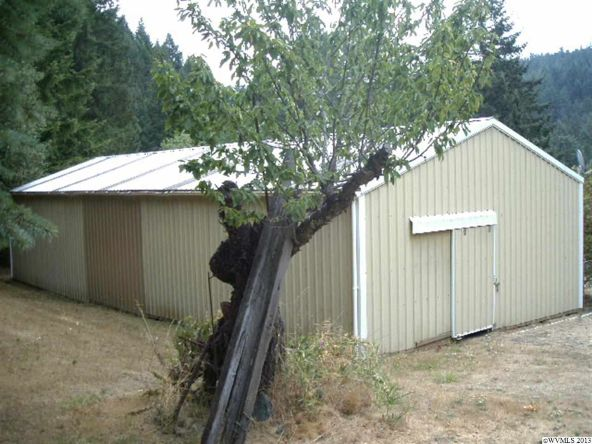 5833 Hubbard Creek Rd., Umpqua, OR 97486 Photo 8