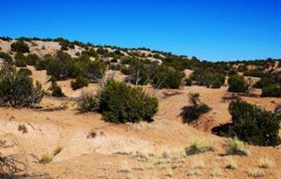 Rocky Bluff Dr. Tract 15-F, Abiquiu, NM 87510 Photo 8