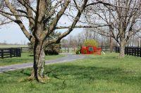 Home for sale: 5189 Old Richmond Rd., Lexington, KY 40515