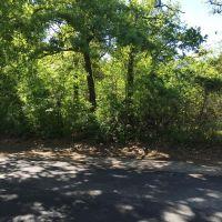 Home for sale: 325 Comanche Trail, West Tawakoni, TX 75474