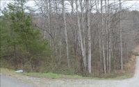 Home for sale: John Call Rd. 1.97, Ellijay, GA 30540