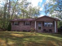 Home for sale: 256 Poplar Ln., Morehead, KY 40351
