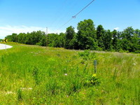 Home for sale: Tbd South Hwy. 63, Mammoth Spring, AR 72554