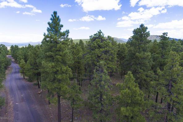 1729 S. Pine Ridge Dr., Williams, AZ 86046 Photo 7