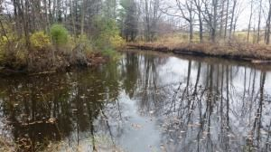 27.55 Acre State Hwy. 32, Sheboygan Falls, WI 53085 Photo 4
