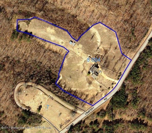 978 Tucker Cemetery Rd., Eldridge, AL 35554 Photo 97