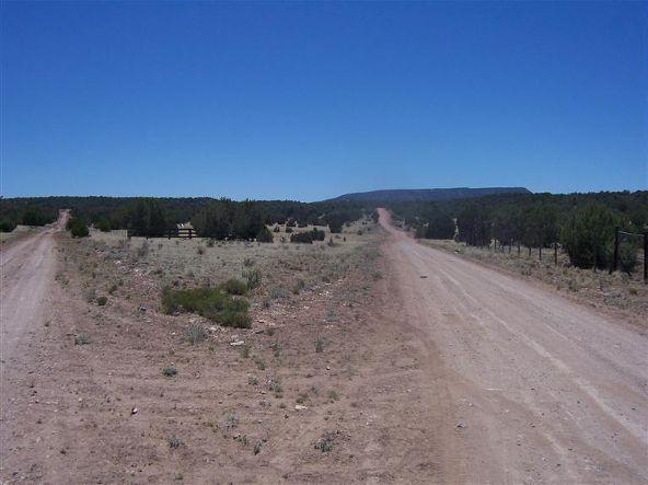56731 N. Potrero Parkway, Seligman, AZ 86337 Photo 1