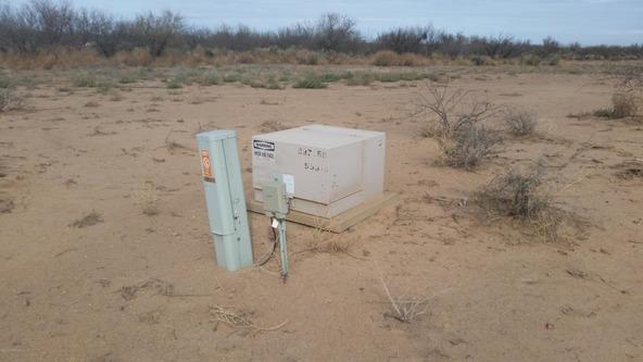 12802 Green Cactus, Tucson, AZ 85735 Photo 4
