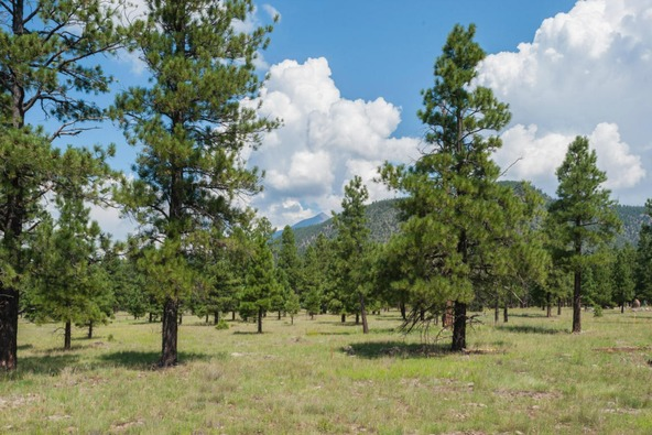 8r Lockett Ranches, Flagstaff, AZ 86001 Photo 7
