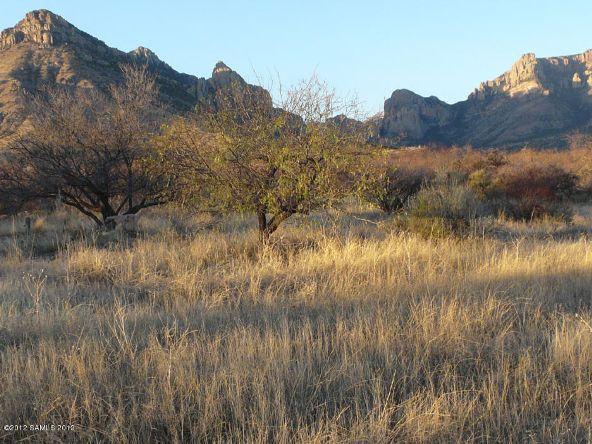 1021 W. Deer Rd., Portal, AZ 85632 Photo 3