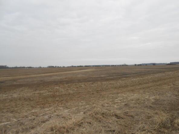 402.93 Acres Long Creek, Waldenburg, AR 72475 Photo 10