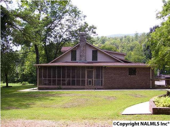 621 County Rd. 604, Hollytree, AL 35751 Photo 2