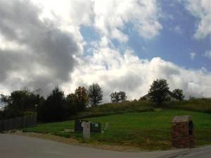 Lot 50 L 50 Whitetail Dr., Walnut Shade, MO 65771 Photo 11
