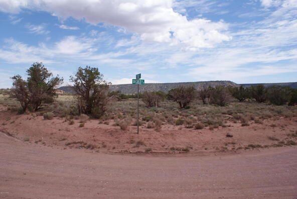 4017 El Dorado, Snowflake, AZ 85937 Photo 4