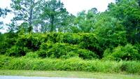 Home for sale: 0 Brigadoon Trail, Gulf Shores, AL 36542