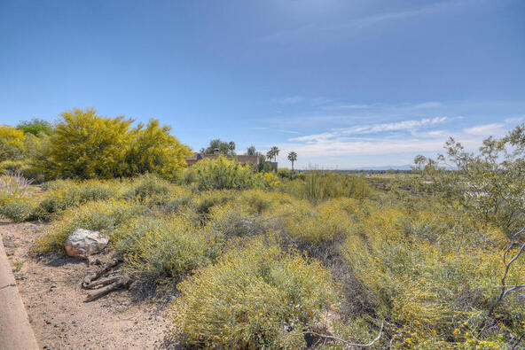 15026 N. 15th Dr., Phoenix, AZ 85023 Photo 4
