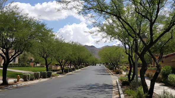 10248 E. Mountain Spring Rd., Scottsdale, AZ 85255 Photo 46