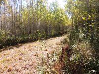 Home for sale: Lot 13 E. Coyote Ridge, Grand Marais, MN 55604