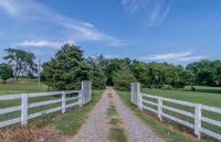 Home for sale: 3514 N. Custer Rd., McKinney, TX 75071