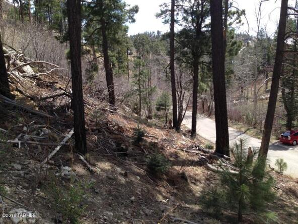 11081 E. Turkey Run, Mount Lemmon, AZ 85619 Photo 5