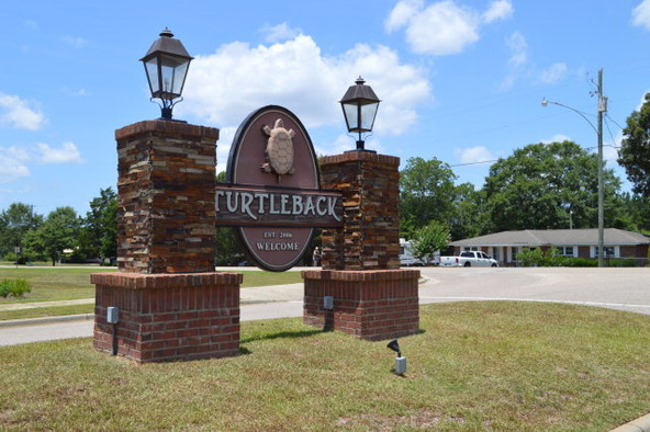 404 Turtleback Trail, Enterprise, AL 36330 Photo 40
