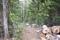 Home for sale: 197 E. Deer Trail, Brian Head, UT 84719