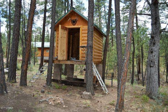 901 Pine Village Ln., Pinetop, AZ 85935 Photo 55