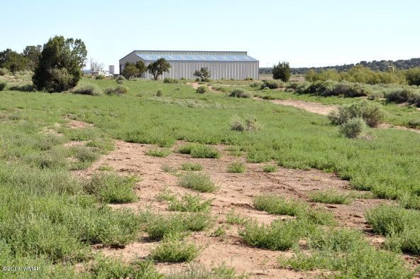 4944 Cedar Hills Rd., 668 Acres, Snowflake, AZ 85937 Photo 72
