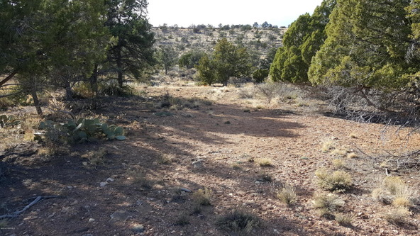 3060 N. Panamint Ln., Chino Valley, AZ 86323 Photo 7