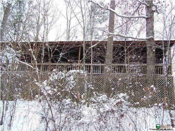 1226 County Rd. 106, Mentone, AL 35984 Photo 9