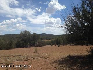 171 Friendship/Conwayden, Ash Fork, AZ 86320 Photo 18