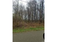 Home for sale: Vl Putnam Rd., Angola, NY 14006