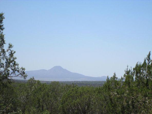 3328 N. Hillside Rd., Ash Fork, AZ 86320 Photo 49