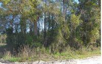 Home for sale: N.W. Amanda St., Lake City, FL 32055